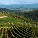 Antinori Toscana